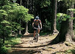 Jeden z trailů před Sečí