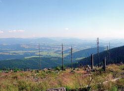 Výhled na Moravu z Kralického Sněžníku
