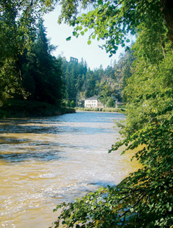 Pohled z údolí Vltavy na Dívčí Kámen