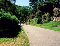 Cesta podél potoka Bystřce lemovaná skalními útvary