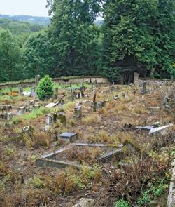 Zdevastovaný hřbitov v Pivoni