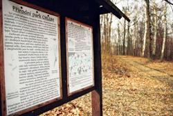 Do lokality Chloumek spadá i přírodní park Chlum