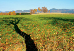Javoří hory z Broumovské kotliny