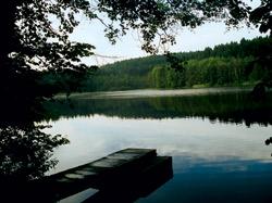 Rybníky pod Javořicí jsou i v parném létě čisté a osvěžující