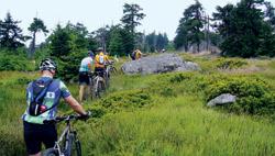 I tohle patří k horské cyklistice