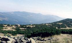 Zleva – Labská louka a bouda, Labský důl, Luční a Studniční Hora
