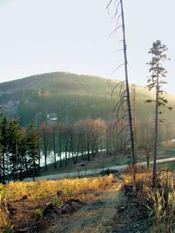 Pohled na Jevíčskou přehradu