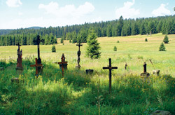 Hřbitov v Pohoří na Šumavě