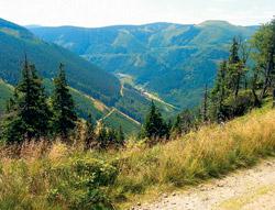 Takové výhledy do údolí potkáte při sjíždění z Pradědu